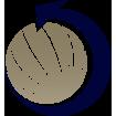 reverse-icon